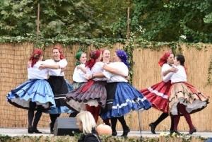 Helyi nemzetiségek zenék és kultúrák bemutatkozása és népszerűsítése - Zomba - 2018. 09. 29. #15