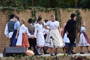 Helyi nemzetiségek zenék és kultúrák bemutatkozása és népszerűsítése - Zomba - 2018. 09. 29. #11