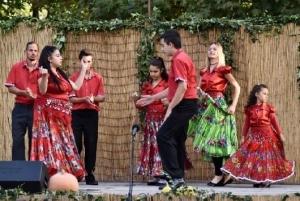 Helyi nemzetiségek zenék és kultúrák bemutatkozása és népszerűsítése - Zomba - 2018. 09. 29. #12